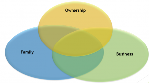 Family Business 3 Circle Model
